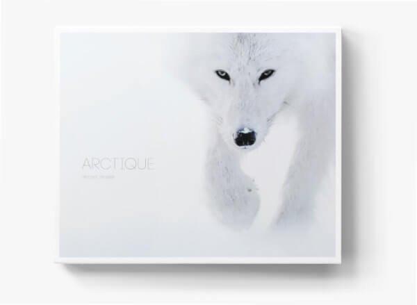 arctique-cover