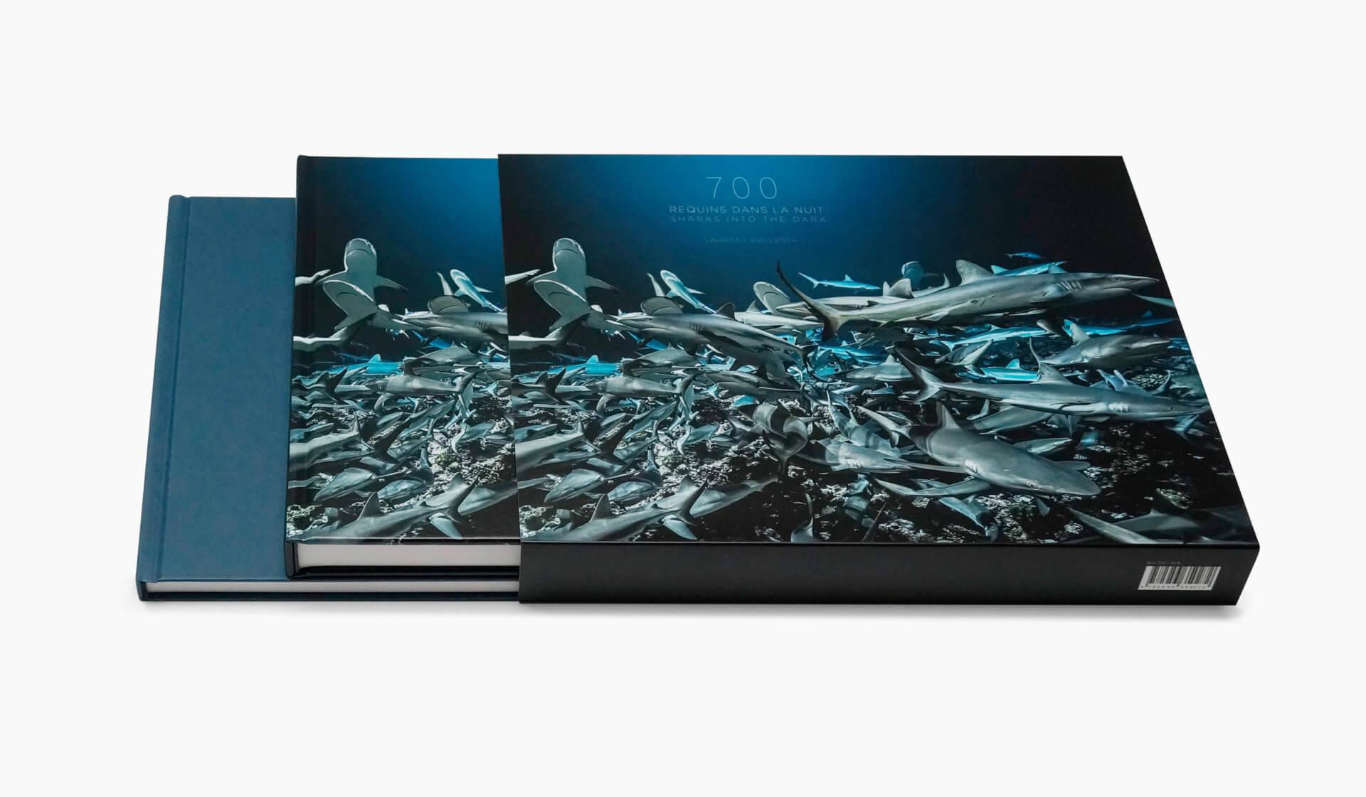 Coffret 700 requins dans la nuit