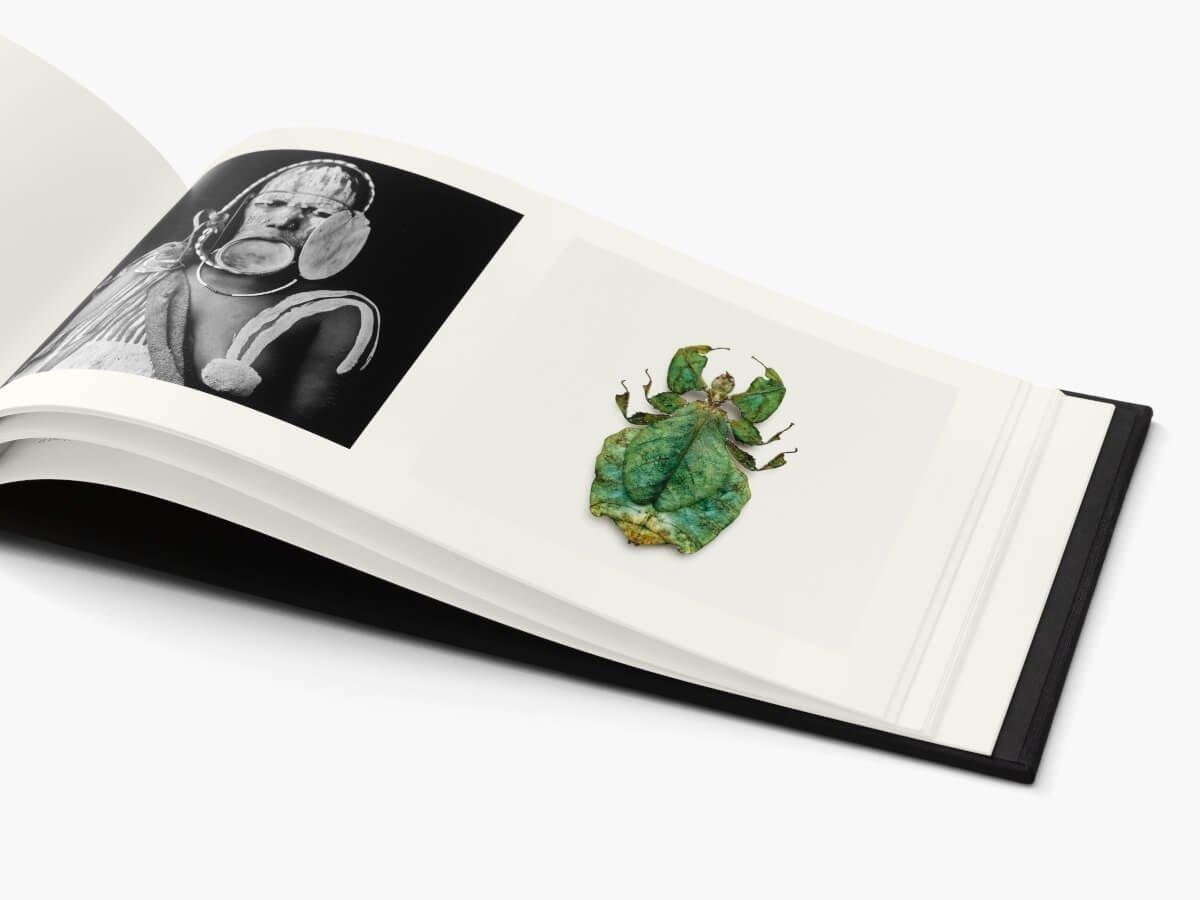 Reciprocity, photo de l'intérieur du livre