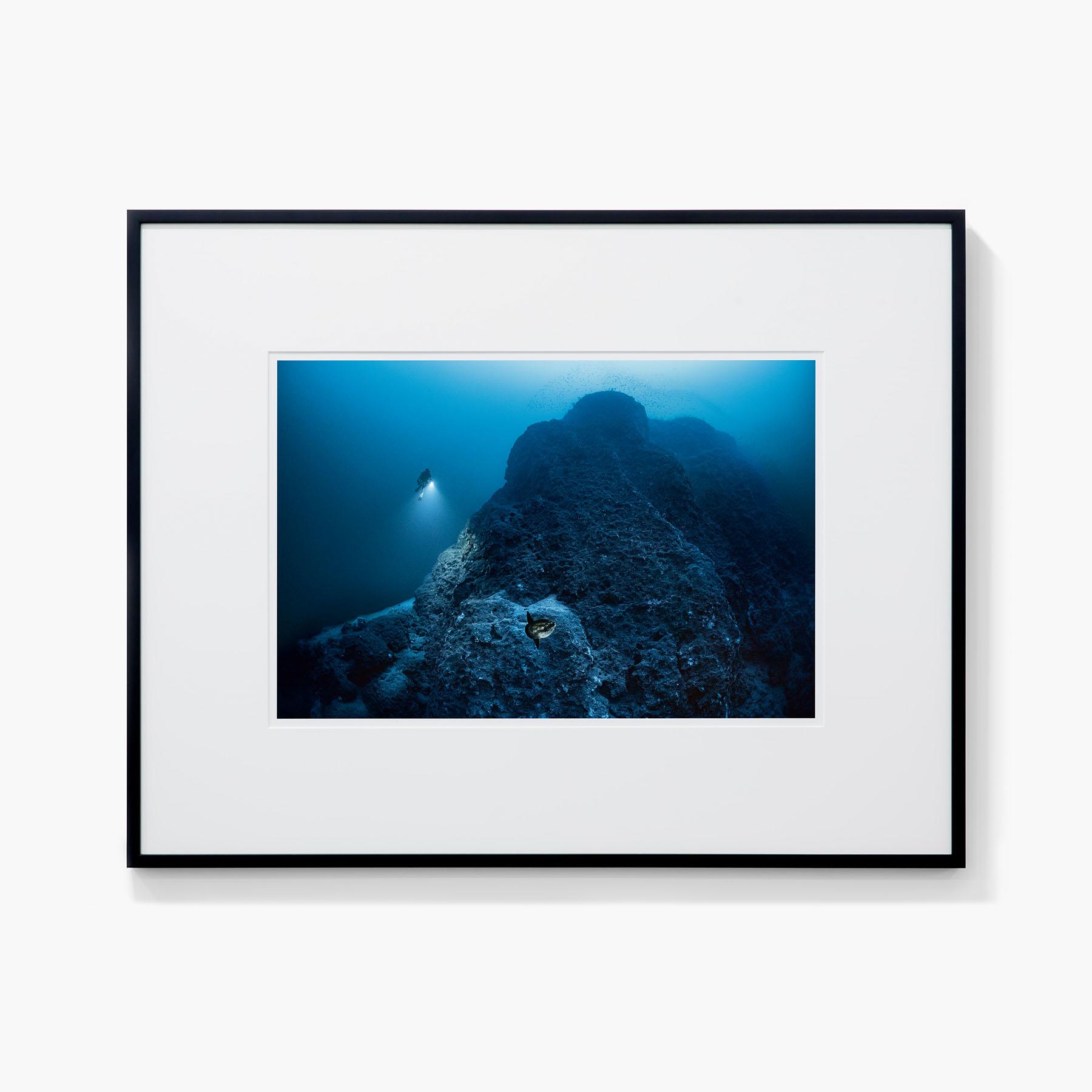 Tirage Laurent Ballesta Le poisson lune, Mola mola