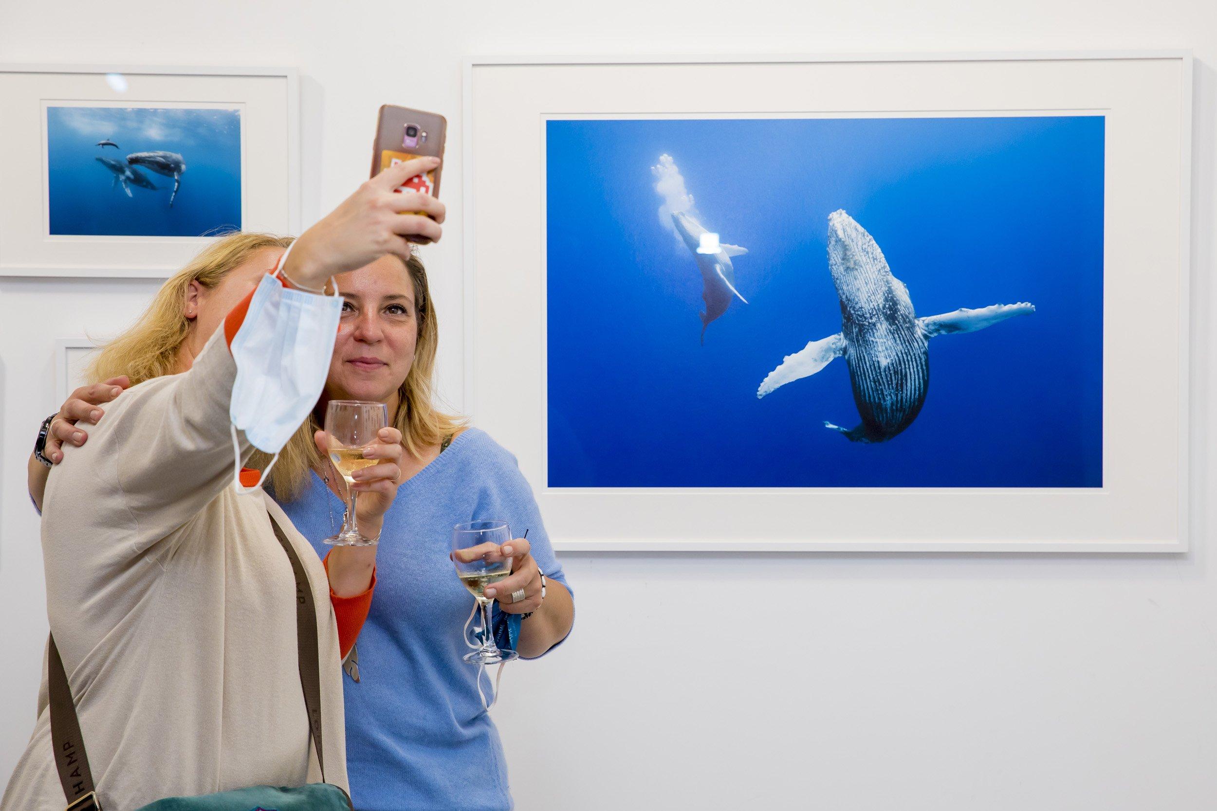 Pop up Hemeria septembre 2020, exposition Espaces liquides. Dans l'intimité des baleines.