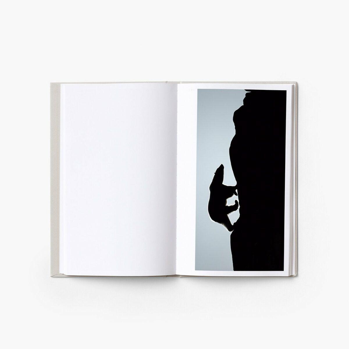 Livre_Solitudes_Vincent_Munier_7