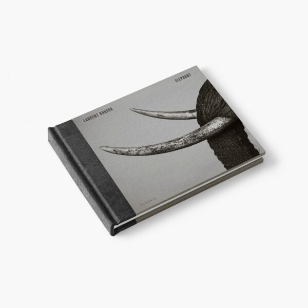 Couverture du livre Elephant